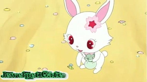 Rythme de production de la série Jewelpet en France